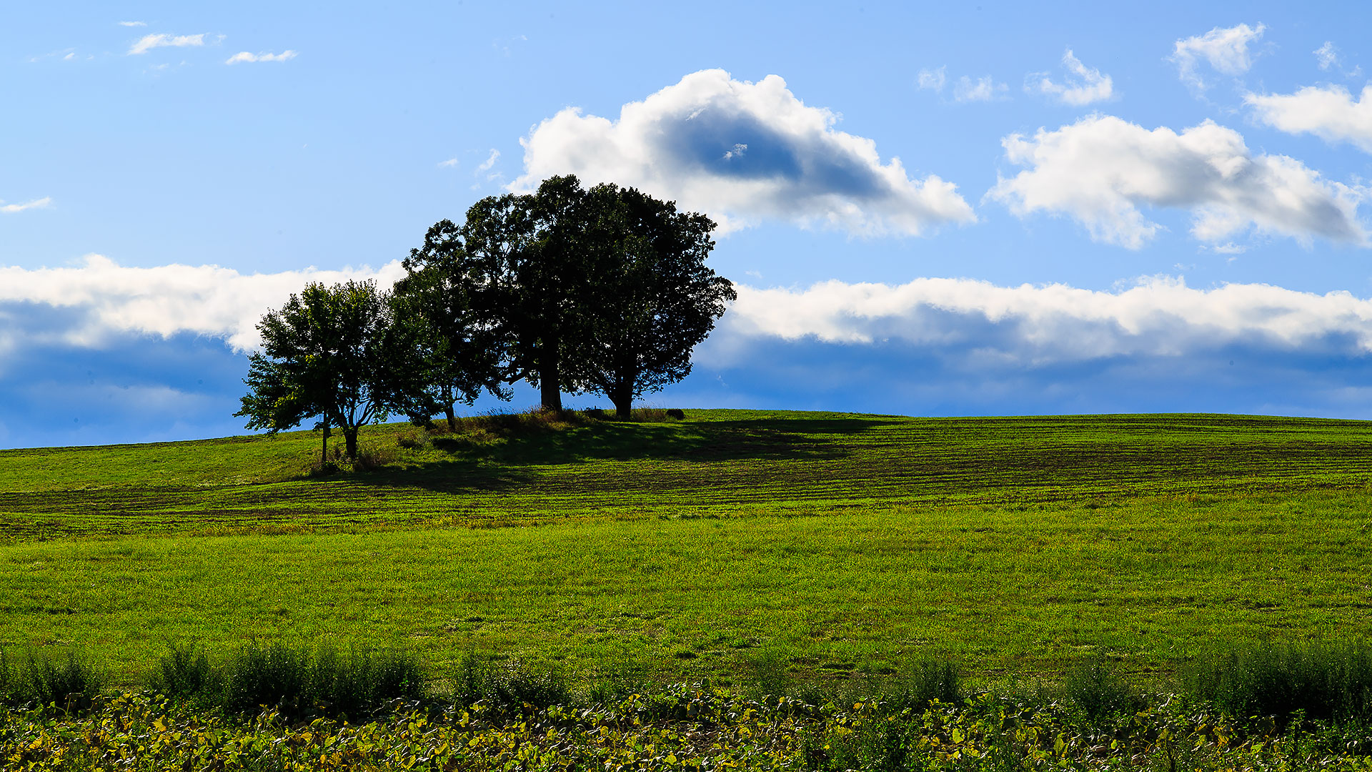 hudson-valley-skyline-with-farm-land-and-meadows